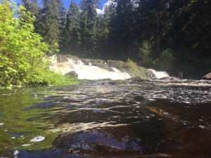 Hatchery-Creek-Falls2